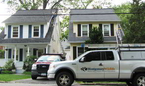 Lansdale, PA - Animal Removal and Exclusion - Montgomery Wildlife