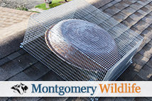 Montgomery Wildlife - Attic Fan Screening